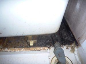 東京都大田区浴室クリーニング、浴槽下高圧洗浄前
